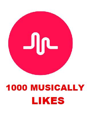 1000 MUSICALLY LIKES