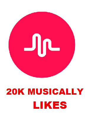 20K MUSICALLY LIKES