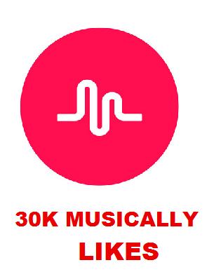 30K MUSICALLY LIKES