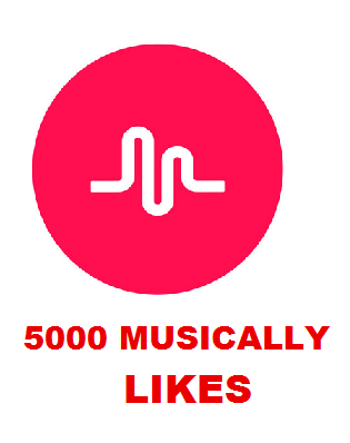 5000 MUSICALLY LIKES